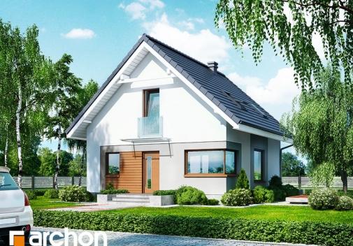 Проект будинку Будинок в рододендронах 11 (H) у Києві