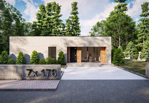 Проект будинку Zx176 в Киеве