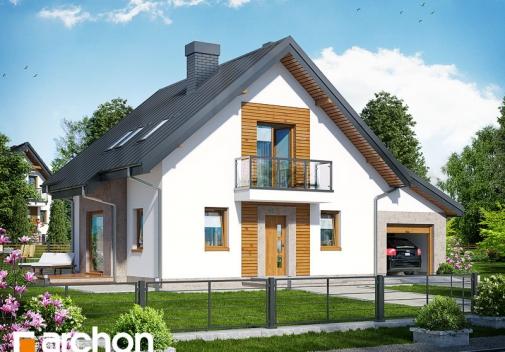Проект будинку Будинок в рододендронах 4 (H) у Києві