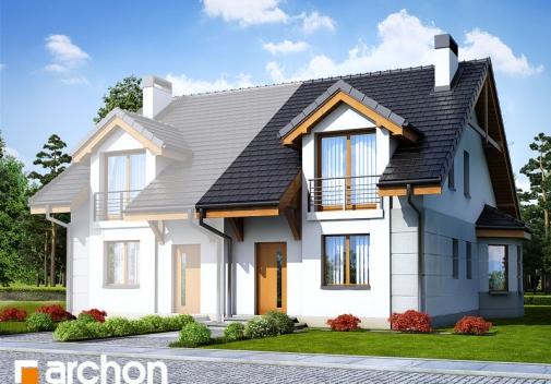 Проект будинку Будинок під гінко 2 вер.2 у Києві